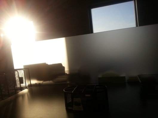 This is the view from my desk in the mornings. It's so bright, I have to wear shades.